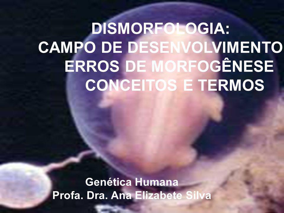 DISMORFOLOGIA: CAMPO DE DESENVOLVIMENTO ERROS DE MORFOGÊNESE CONCEITOS E TERMOS Genética Humana Profa. Dra. Ana Elizabete Silva