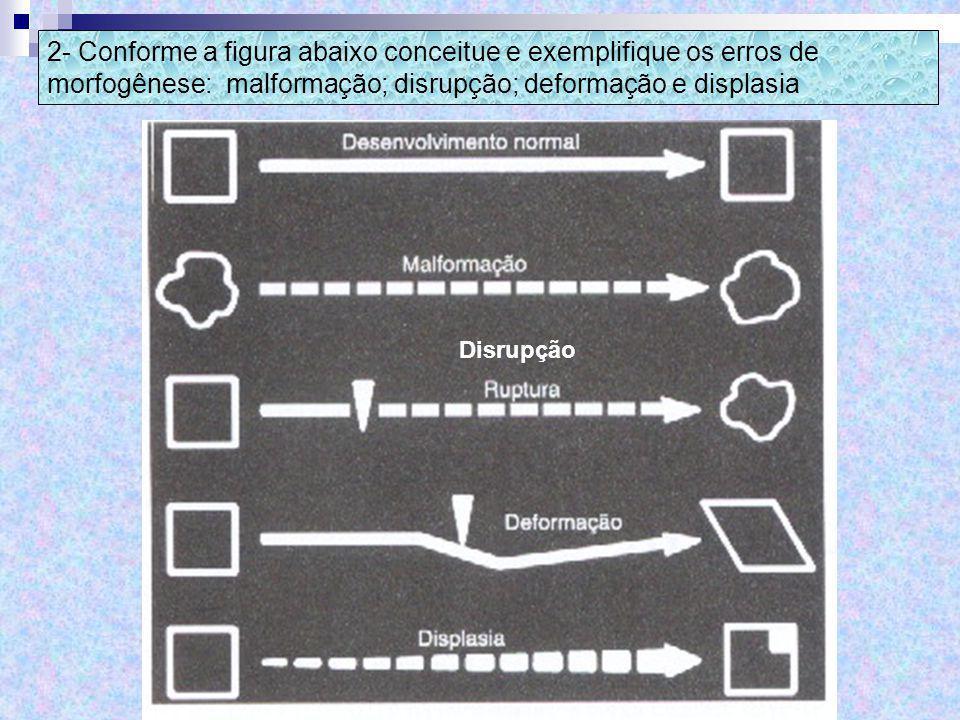 Disrupção 2- Conforme a figura abaixo conceitue e exemplifique os erros de morfogênese: malformação; disrupção; deformação e displasia