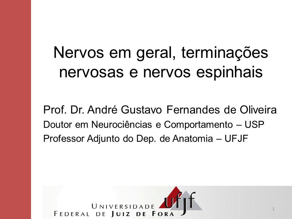 Nervos em geral, terminações nervosas e nervos espinhais Prof. Dr. André Gustavo Fernandes de Oliveira Doutor em Neurociências e Comportamento – USP P