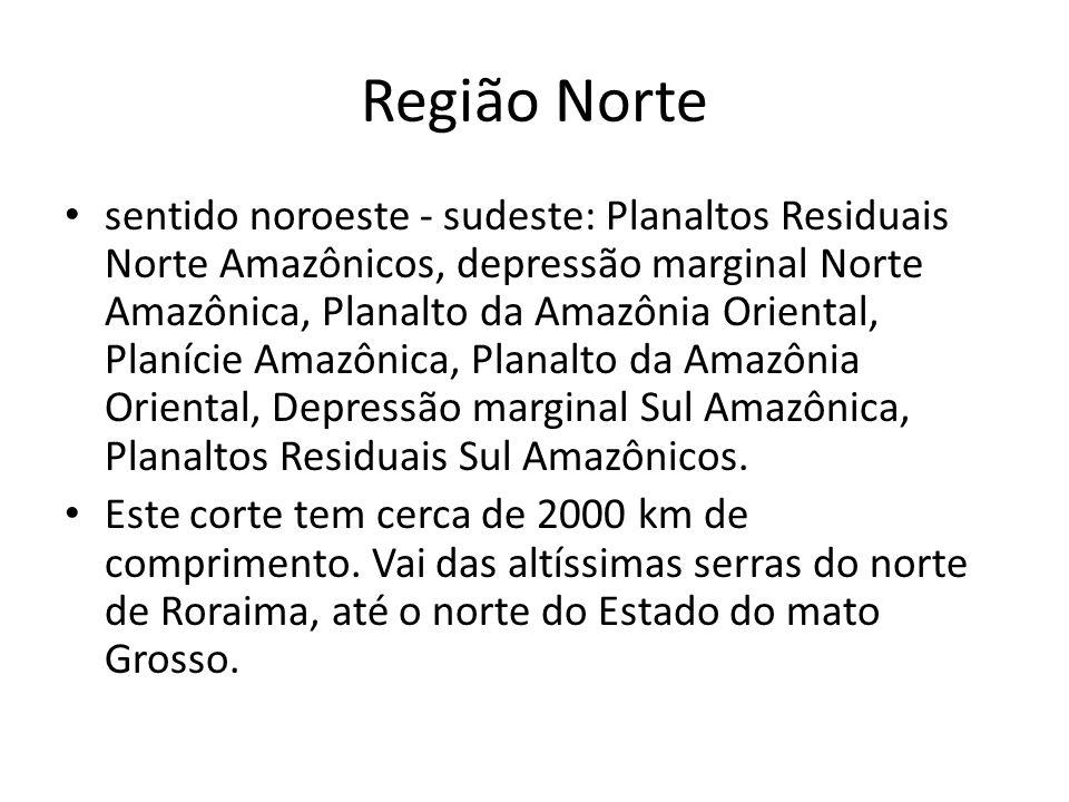 sentido noroeste - sudeste: Planaltos Residuais Norte Amazônicos, depressão marginal Norte Amazônica, Planalto da Amazônia Oriental, Planície Amazônic