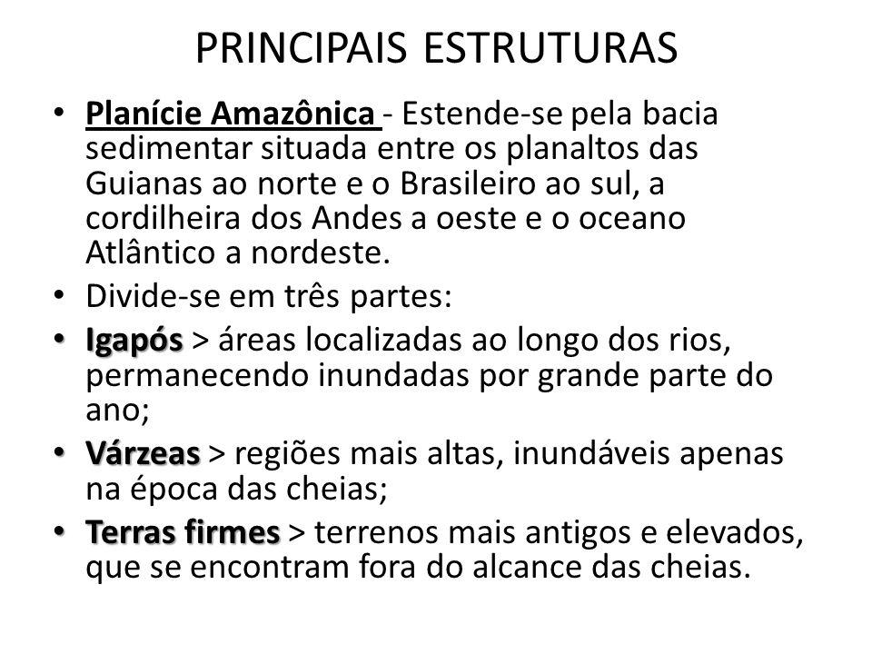 PRINCIPAIS ESTRUTURAS Planície Amazônica - Estende-se pela bacia sedimentar situada entre os planaltos das Guianas ao norte e o Brasileiro ao sul, a c