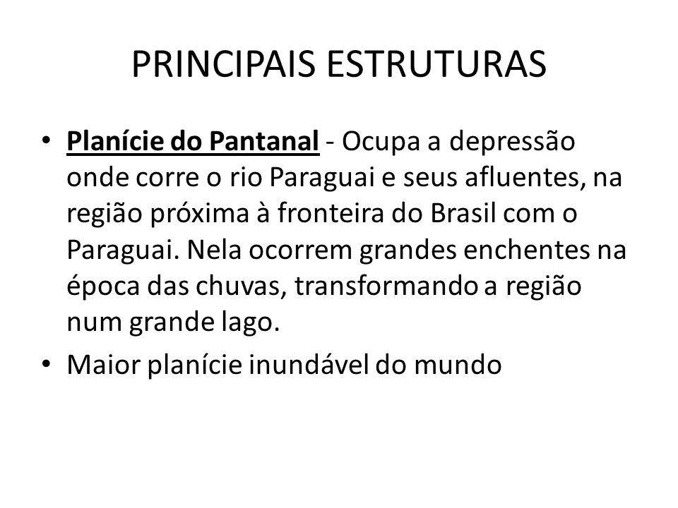 PRINCIPAIS ESTRUTURAS Planície do Pantanal - Ocupa a depressão onde corre o rio Paraguai e seus afluentes, na região próxima à fronteira do Brasil com