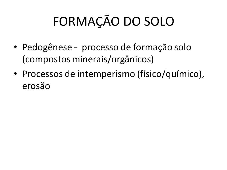 FORMAÇÃO DO SOLO Pedogênese - processo de formação solo (compostos minerais/orgânicos) Processos de intemperismo (físico/químico), erosão