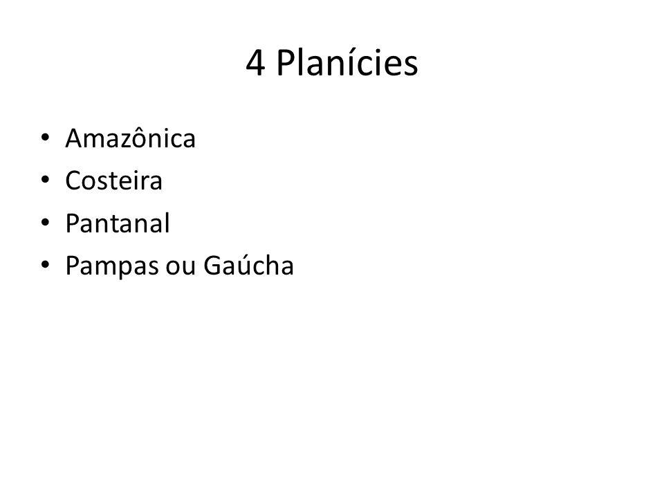 4 Planícies Amazônica Costeira Pantanal Pampas ou Gaúcha