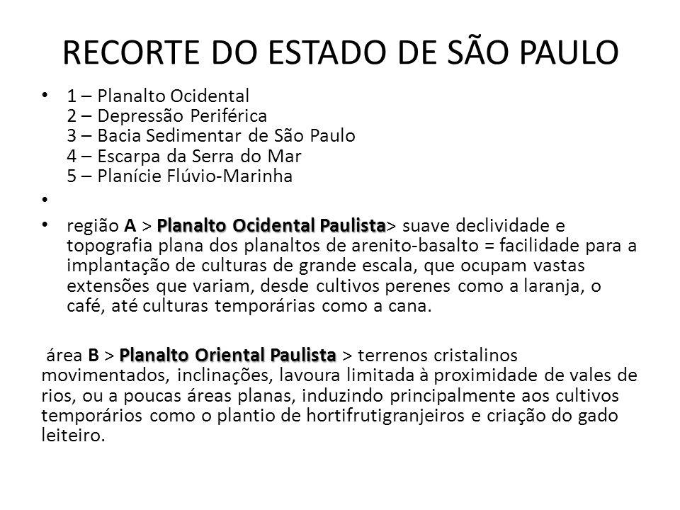 1 – Planalto Ocidental 2 – Depressão Periférica 3 – Bacia Sedimentar de São Paulo 4 – Escarpa da Serra do Mar 5 – Planície Flúvio-Marinha Planalto Oci