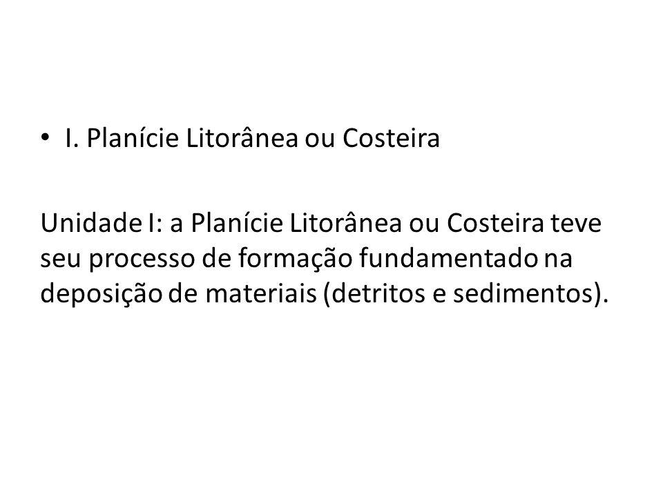 I. Planície Litorânea ou Costeira Unidade I: a Planície Litorânea ou Costeira teve seu processo de formação fundamentado na deposição de materiais (de