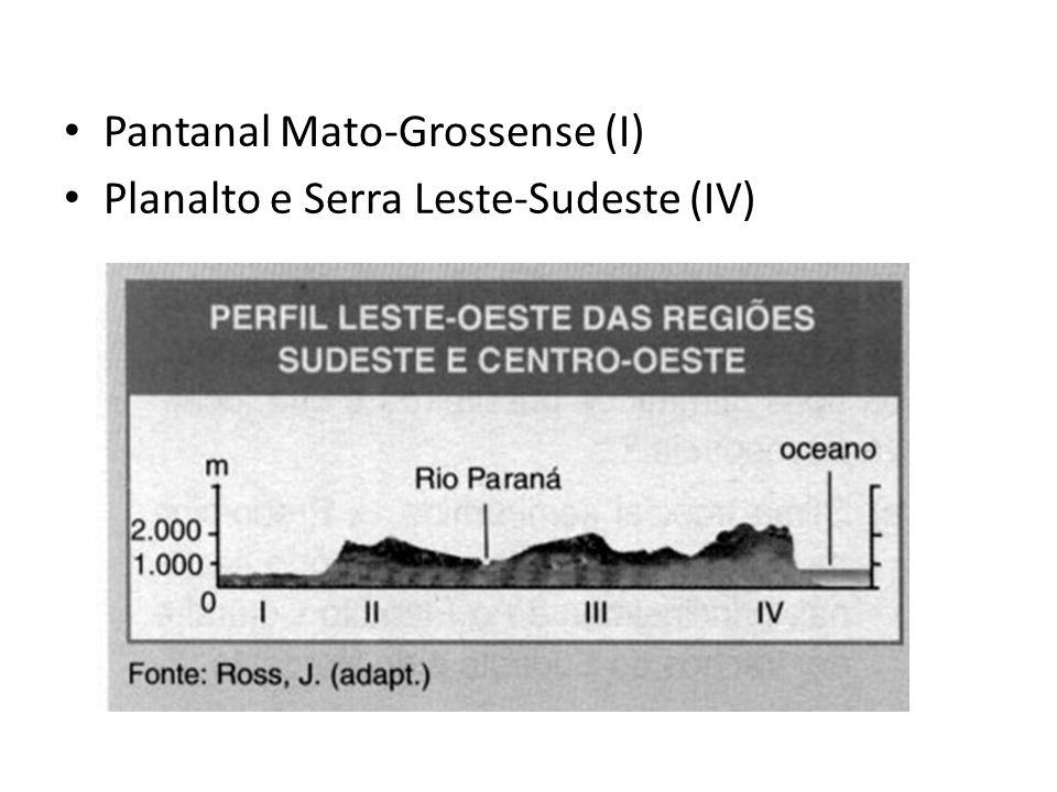 Pantanal Mato-Grossense (I) Planalto e Serra Leste-Sudeste (IV)