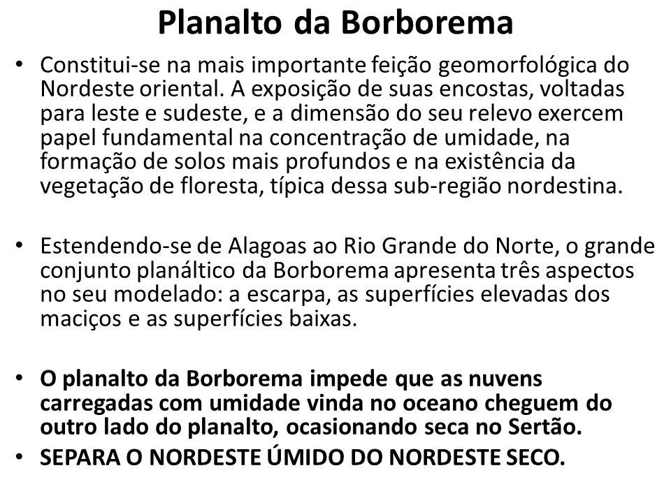 Planalto da Borborema Constitui-se na mais importante feição geomorfológica do Nordeste oriental. A exposição de suas encostas, voltadas para leste e