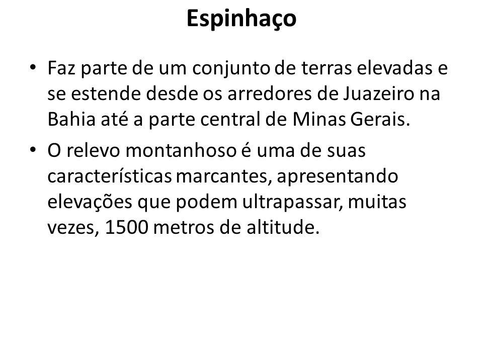 Espinhaço Faz parte de um conjunto de terras elevadas e se estende desde os arredores de Juazeiro na Bahia até a parte central de Minas Gerais. O rele