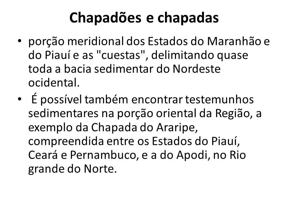 Chapadões e chapadas porção meridional dos Estados do Maranhão e do Piauí e as