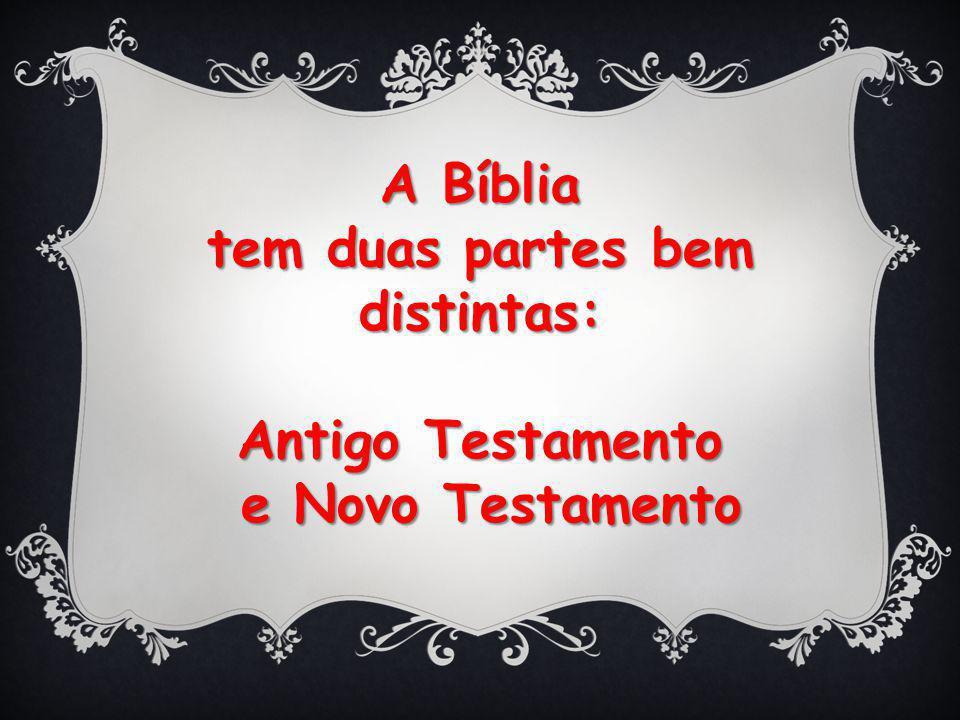 A Bíblia tem duas partes bem distintas: Antigo Testamento e Novo Testamento e Novo Testamento