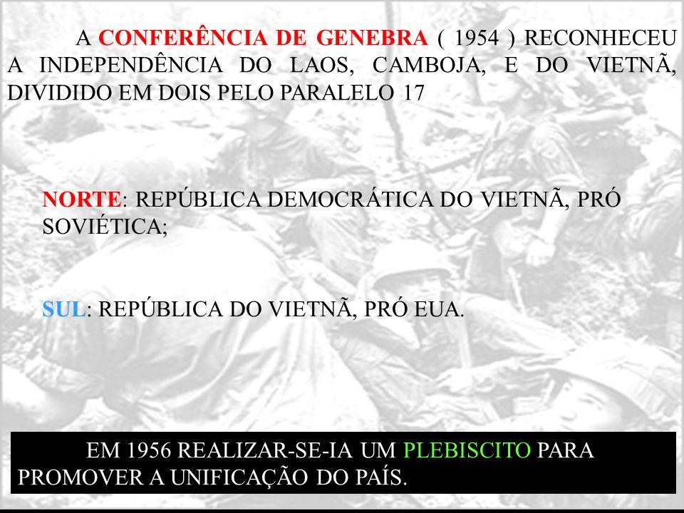 NORTE: REPÚBLICA DEMOCRÁTICA DO VIETNÃ, PRÓ SOVIÉTICA; SUL: REPÚBLICA DO VIETNÃ, PRÓ EUA. A CONFERÊNCIA DE GENEBRA ( 1954 ) RECONHECEU A INDEPENDÊNCIA