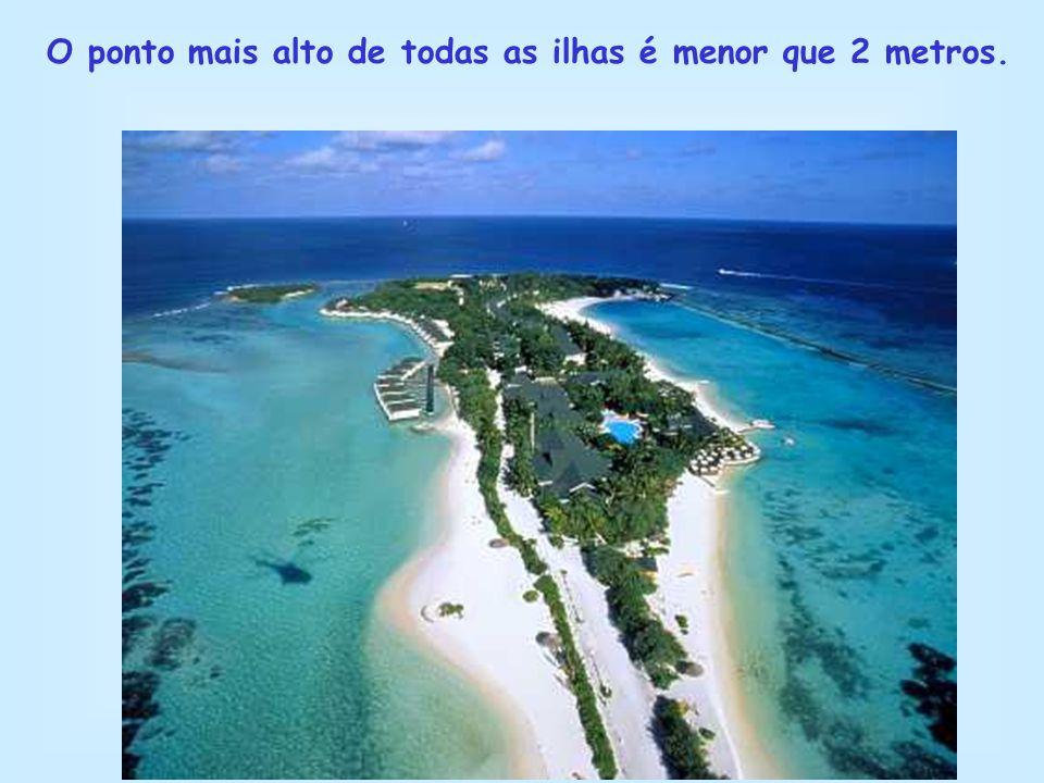 O ponto mais alto de todas as ilhas é menor que 2 metros.