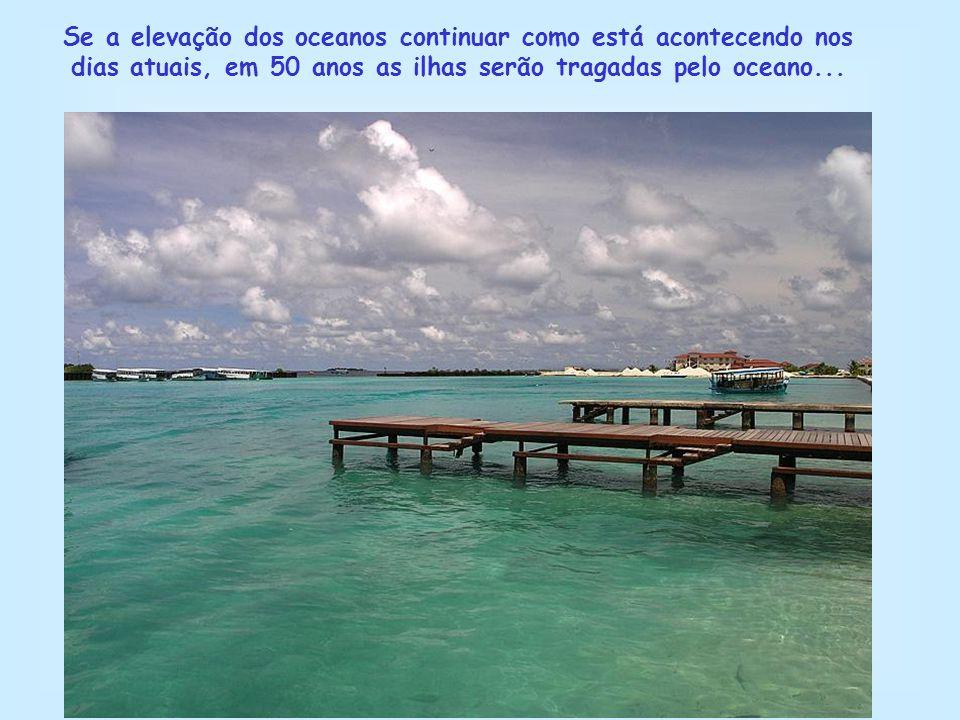 Se a elevação dos oceanos continuar como está acontecendo nos dias atuais, em 50 anos as ilhas serão tragadas pelo oceano...