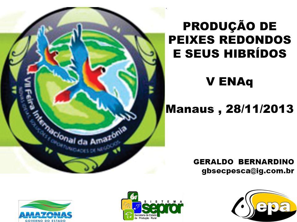 . PRODUÇÃO DE PEIXES REDONDOS E SEUS HIBRÍDOS V ENAq Manaus, 28/11/2013 GERALDO BERNARDINO gbsecpesca@ig.com.br