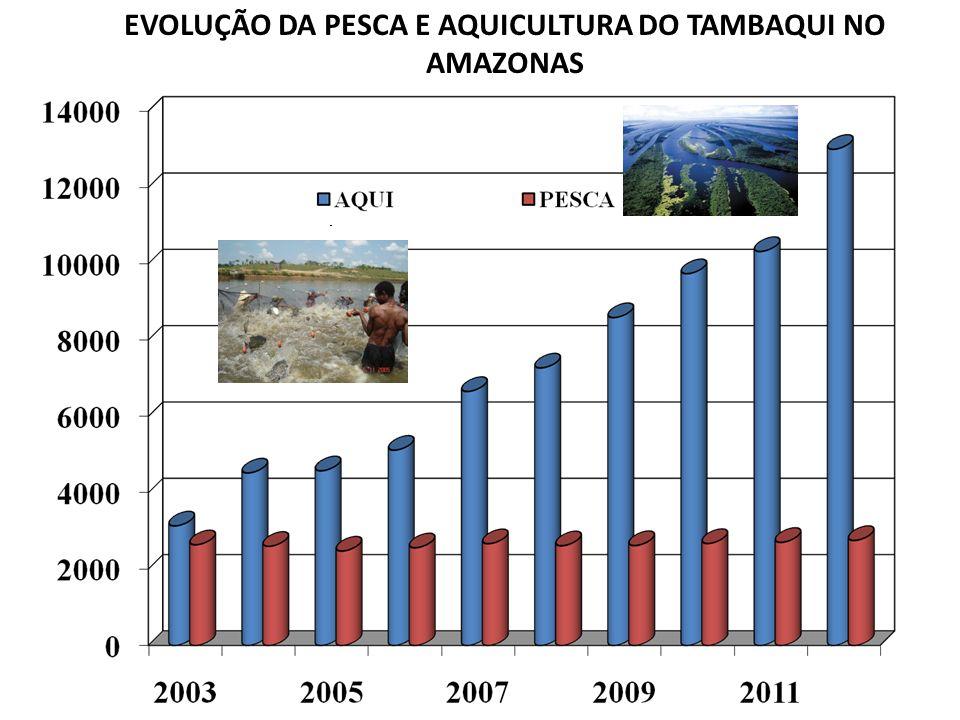 7 EVOLUÇÃO DA PESCA E AQUICULTURA DO TAMBAQUI NO AMAZONAS