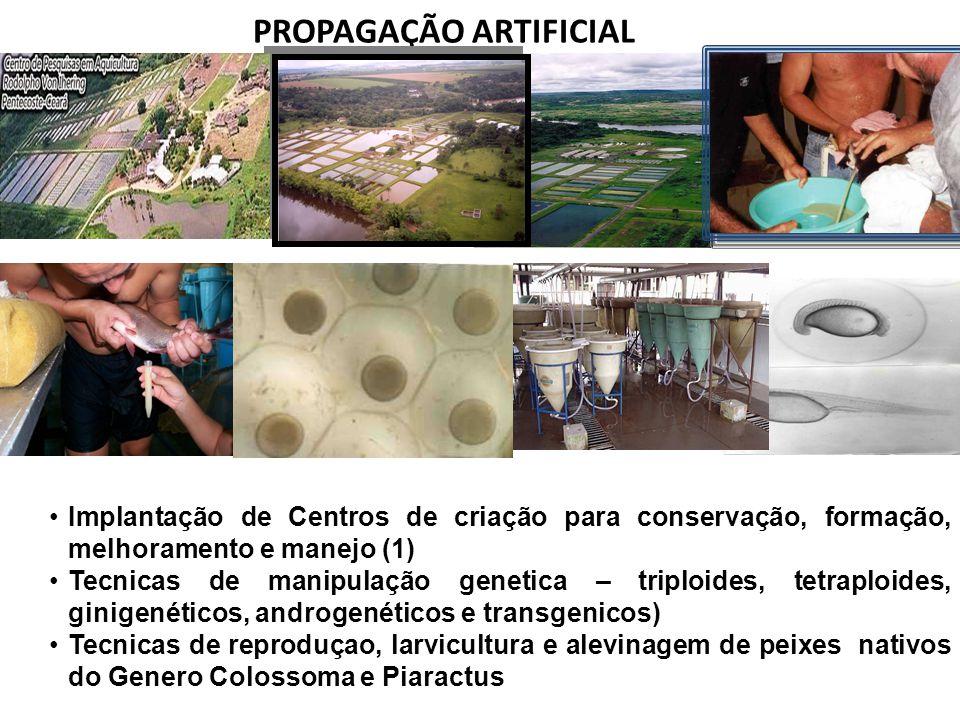 PROPAGAÇÃO ARTIFICIAL Implantação de Centros de criação para conservação, formação, melhoramento e manejo (1) Tecnicas de manipulação genetica – tripl