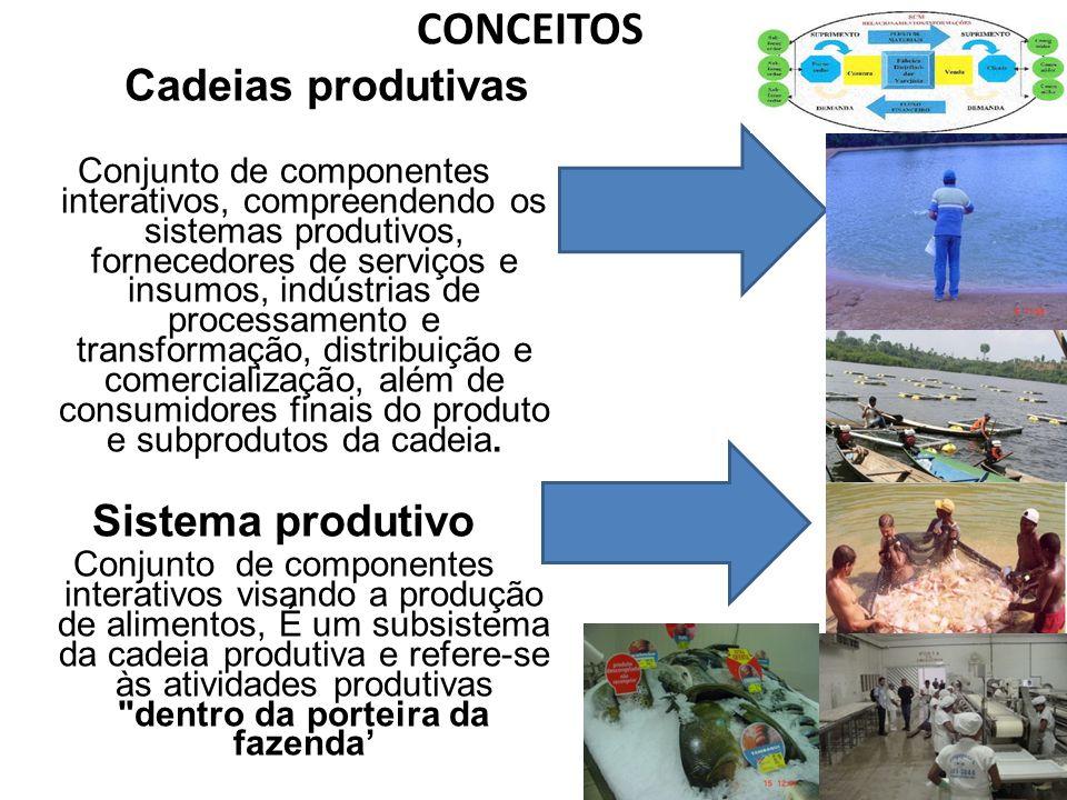 CONCEITOS Cadeias produtivas Conjunto de componentes interativos, compreendendo os sistemas produtivos, fornecedores de serviços e insumos, indústrias