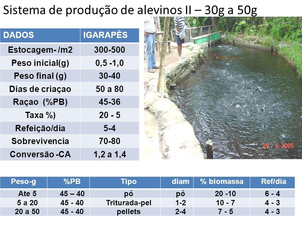 DADOSIGARAPÉS Estocagem- /m2300-500 Peso inicial(g)0,5 -1,0 Peso final (g)30-40 Dias de criaçao50 a 80 Raçao (%PB)45-36 Taxa %)20 - 5 Refeição/dia5-4