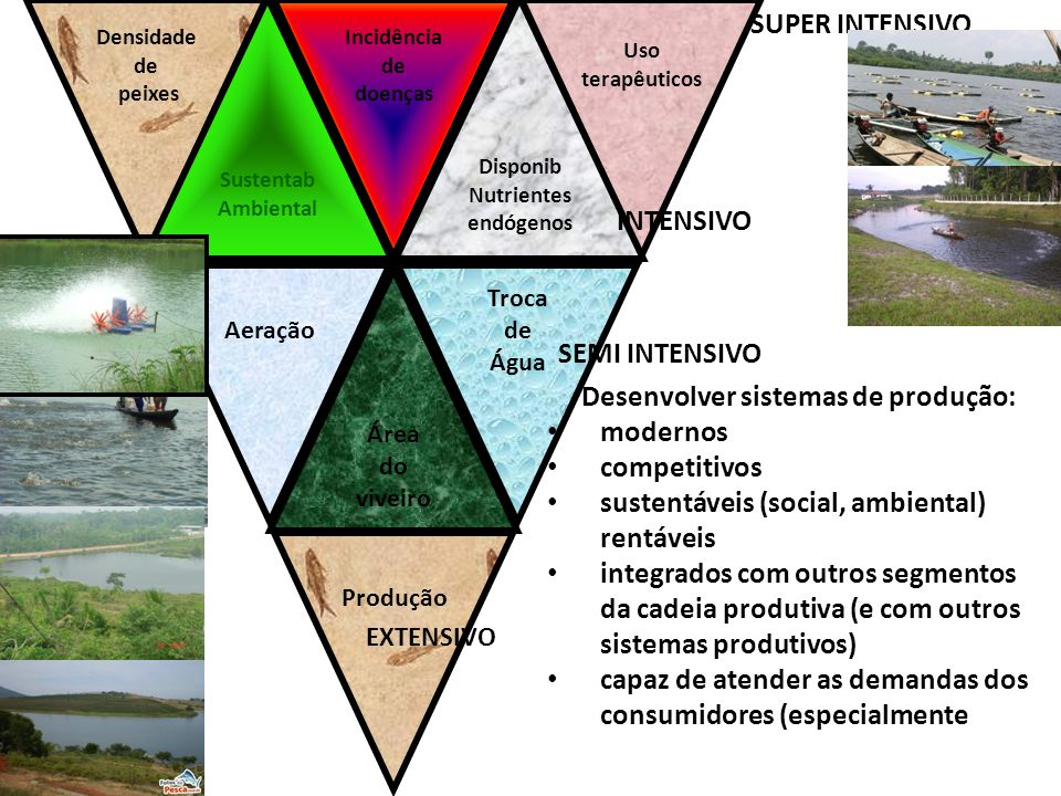 Densidade de peixes Incidência de doenças Uso terapêuticos Aeração Troca de Água Produção Sustentab Ambiental Disponib Nutrientes endógenos Área do vi
