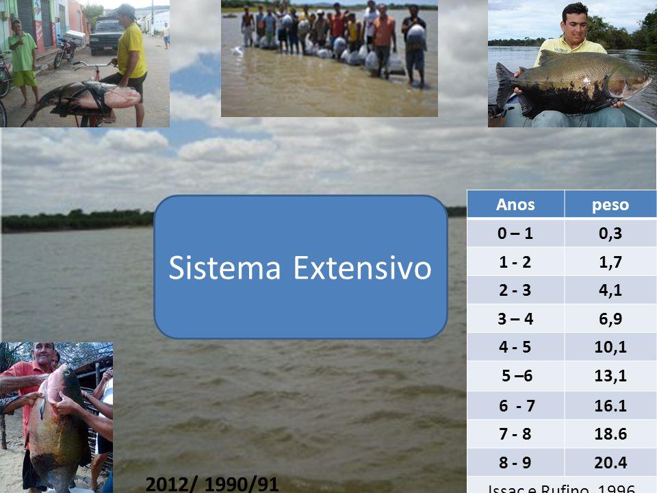 Anospeso 0 – 10,3 1 - 21,7 2 - 34,1 3 – 46,9 4 - 510,1 5 –613,1 6 - 716.1 7 - 818.6 8 - 920.4 Issac e Rufino, 1996 2012/ 1990/91 Sistema Extensivo