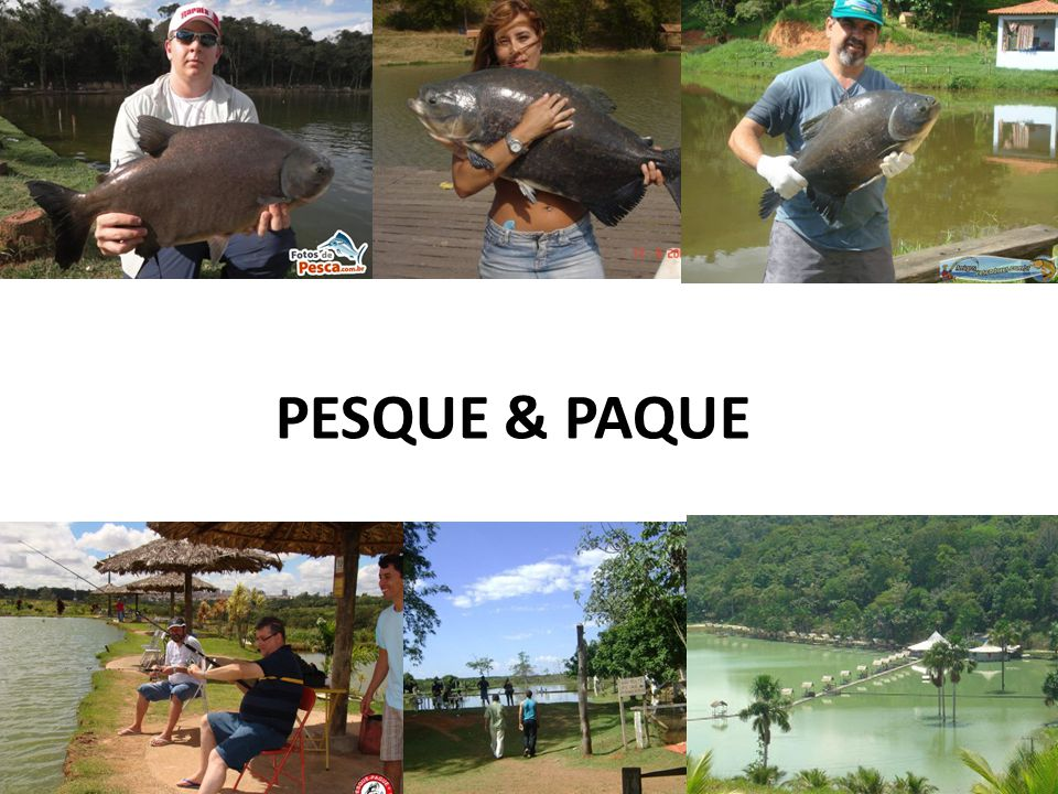 PESQUE & PAQUE
