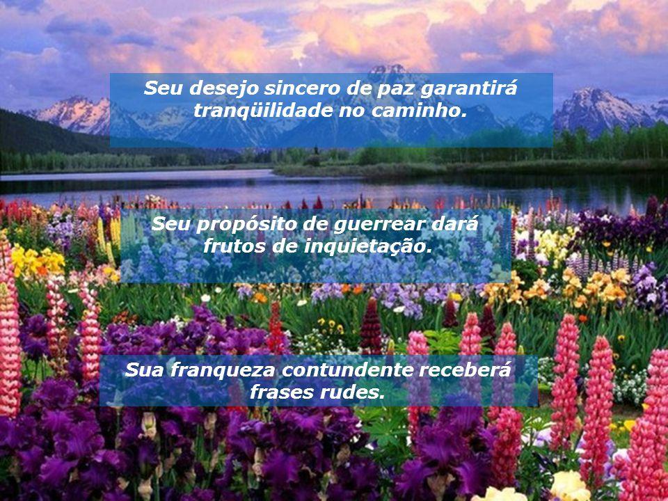Seu desejo sincero de paz garantirá tranqüilidade no caminho.