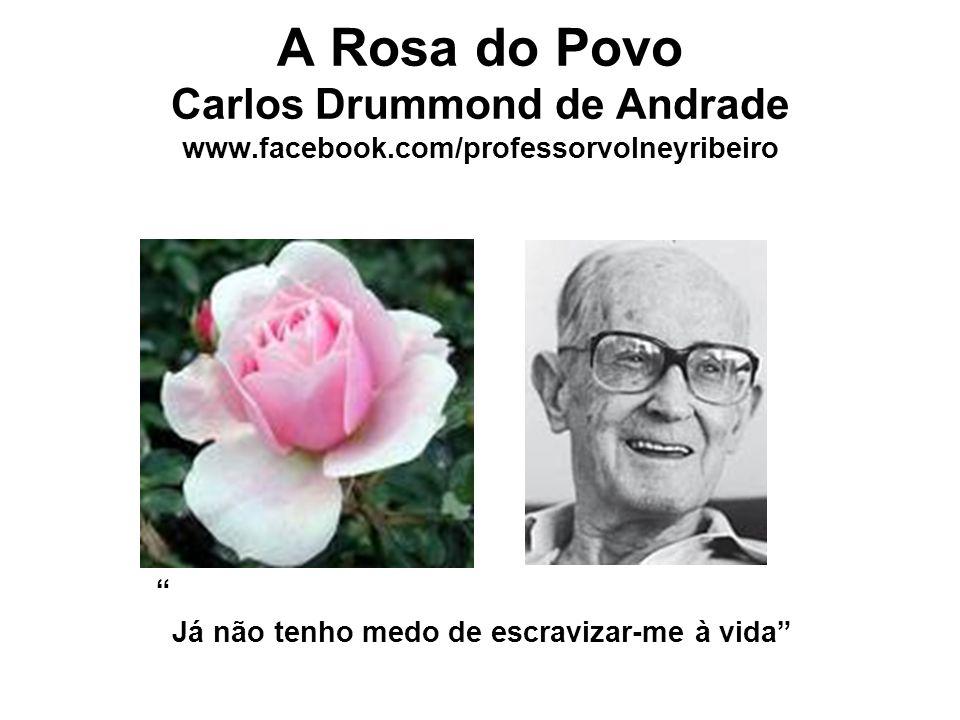"""A Rosa do Povo Carlos Drummond de Andrade www.facebook.com/professorvolneyribeiro """" Já não tenho medo de escravizar-me à vida"""""""