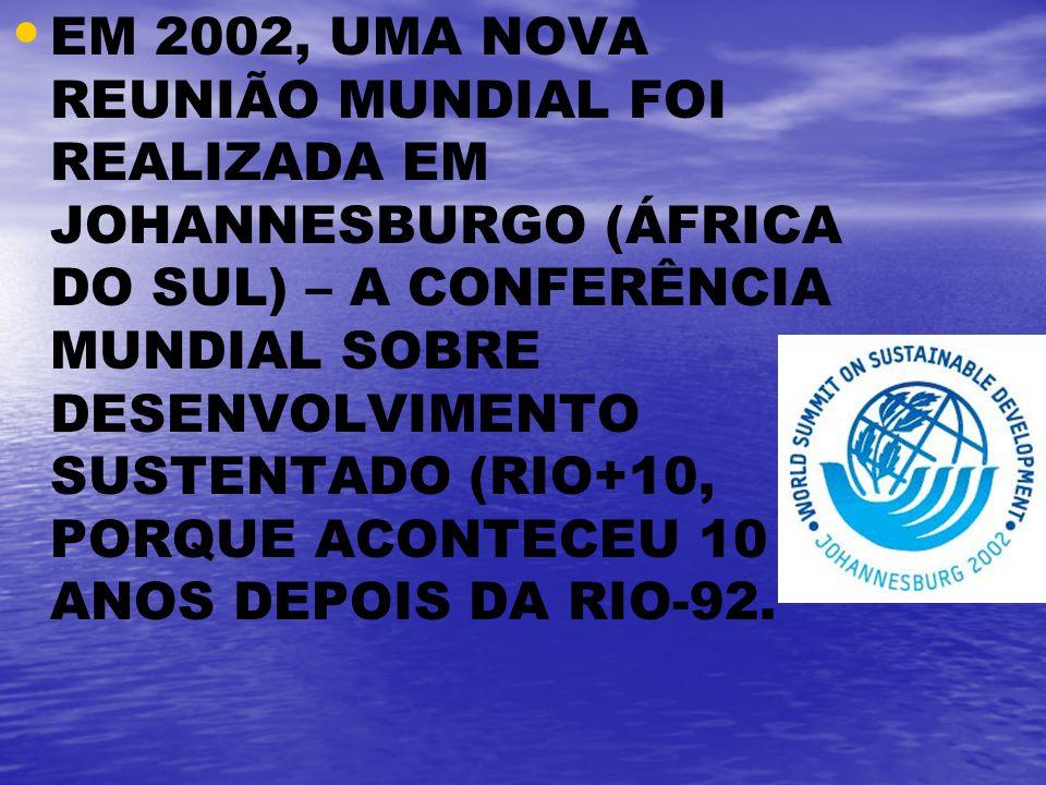 EM 2002, UMA NOVA REUNIÃO MUNDIAL FOI REALIZADA EM JOHANNESBURGO (ÁFRICA DO SUL) – A CONFERÊNCIA MUNDIAL SOBRE DESENVOLVIMENTO SUSTENTADO (RIO+10, POR