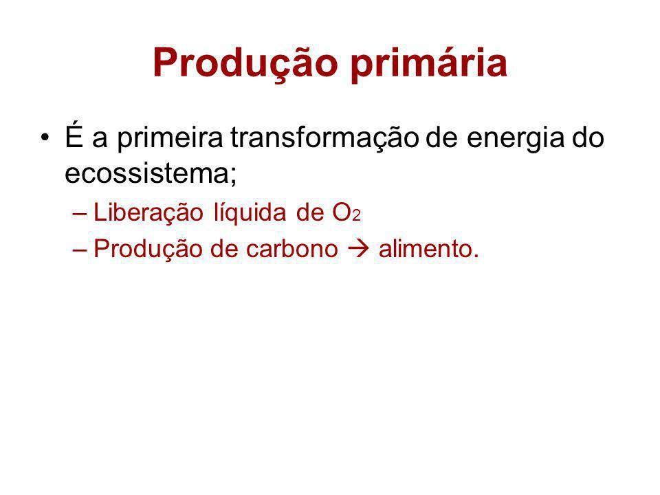 Produção primária É a primeira transformação de energia do ecossistema; –Liberação líquida de O 2 –Produção de carbono  alimento.