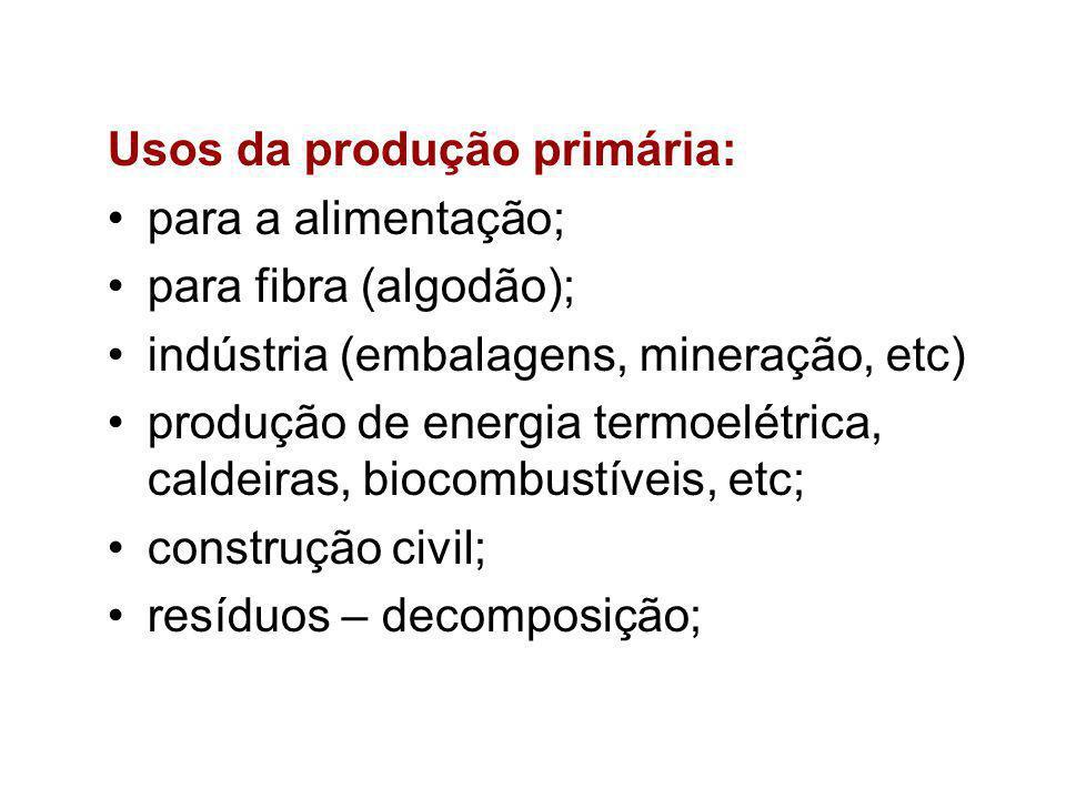 Usos da produção primária: para a alimentação; para fibra (algodão); indústria (embalagens, mineração, etc) produção de energia termoelétrica, caldeiras, biocombustíveis, etc; construção civil; resíduos – decomposição;