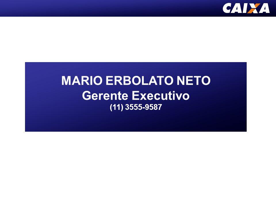 MARIO ERBOLATO NETO Gerente Executivo (11) 3555-9587