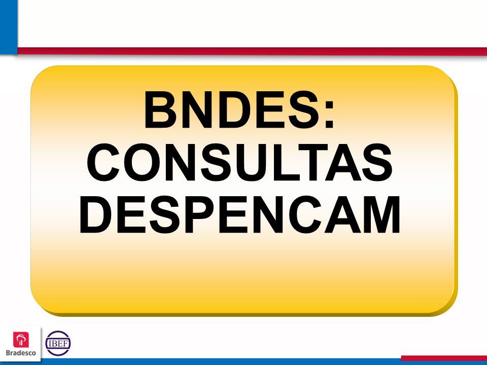 737373 7373 BNDES: CONSULTAS DESPENCAM