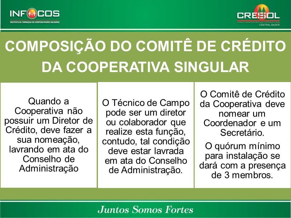 COMPOSIÇÃO DO COMITÊ DE CRÉDITO DA COOPERATIVA SINGULAR Quando a Cooperativa não possuir um Diretor de Crédito, deve fazer a sua nomeação, lavrando em