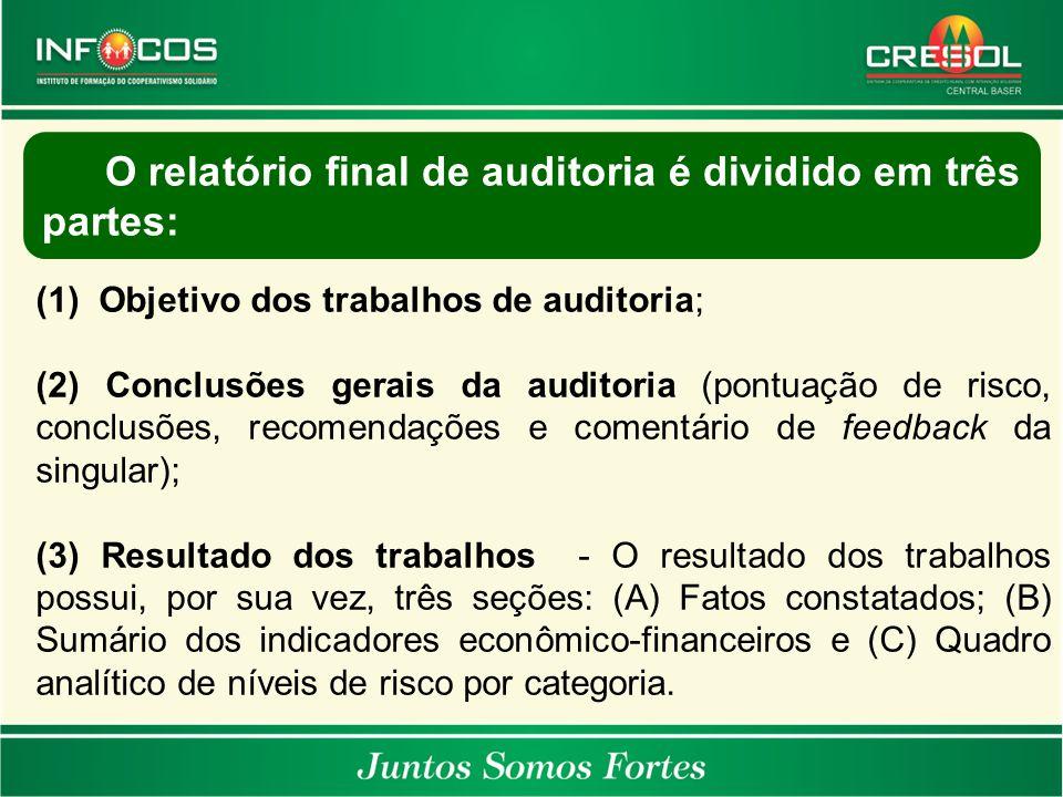(1)Objetivo dos trabalhos de auditoria; (2) Conclusões gerais da auditoria (pontuação de risco, conclusões, recomendações e comentário de feedback da