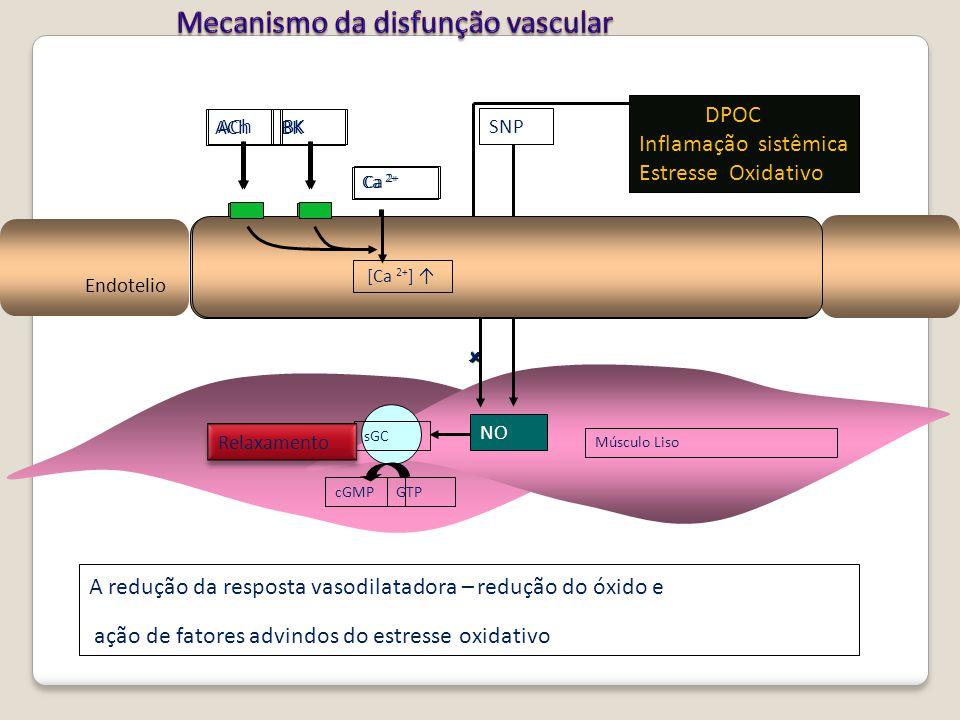 Endotelio Músculo Liso [Ca 2+ ] ↑ AChBK Ca 2+ sGC GTP cGMP Relaxamento A redução da resposta vasodilatadora – redução do óxido e ação de fatores advin