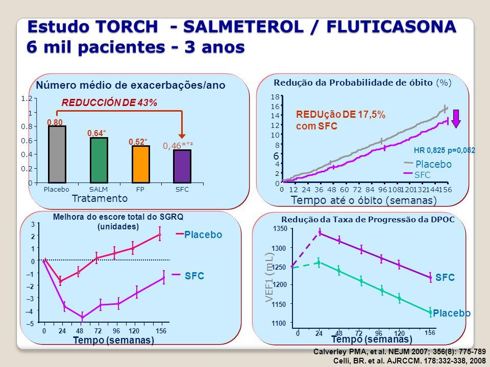 Estudo TORCH - SALMETEROL / FLUTICASONA 6 mil pacientes - 3 anos Estudo TORCH - SALMETEROL / FLUTICASONA 6 mil pacientes - 3 anos Calverley PMA, et al