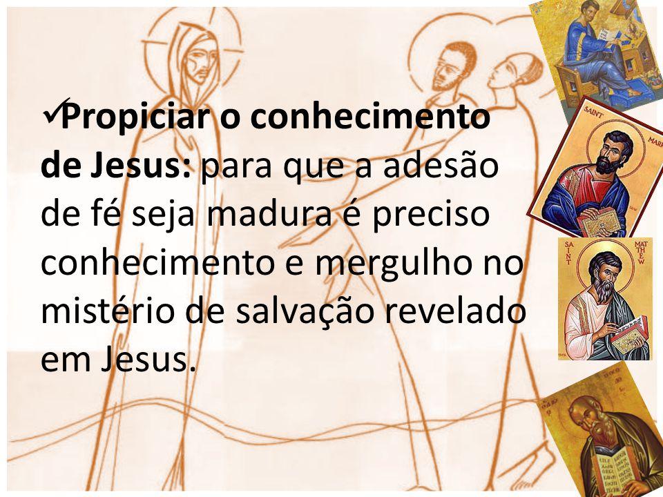Propiciar o conhecimento de Jesus: para que a adesão de fé seja madura é preciso conhecimento e mergulho no mistério de salvação revelado em Jesus.