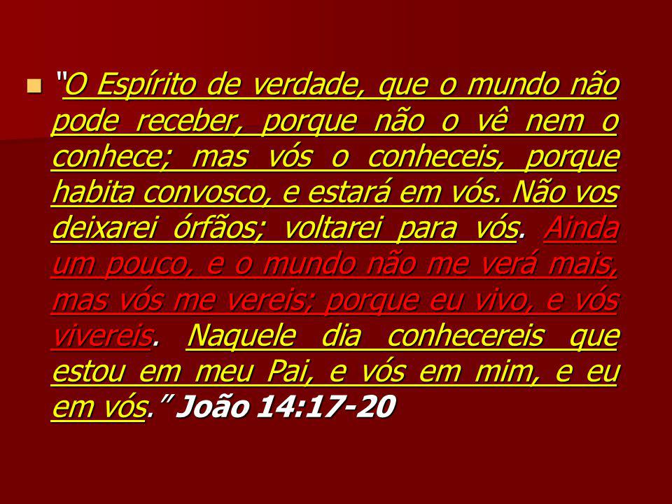 O Espírito de verdade, que o mundo não pode receber, porque não o vê nem o conhece; mas vós o conheceis, porque habita convosco, e estará em vós.