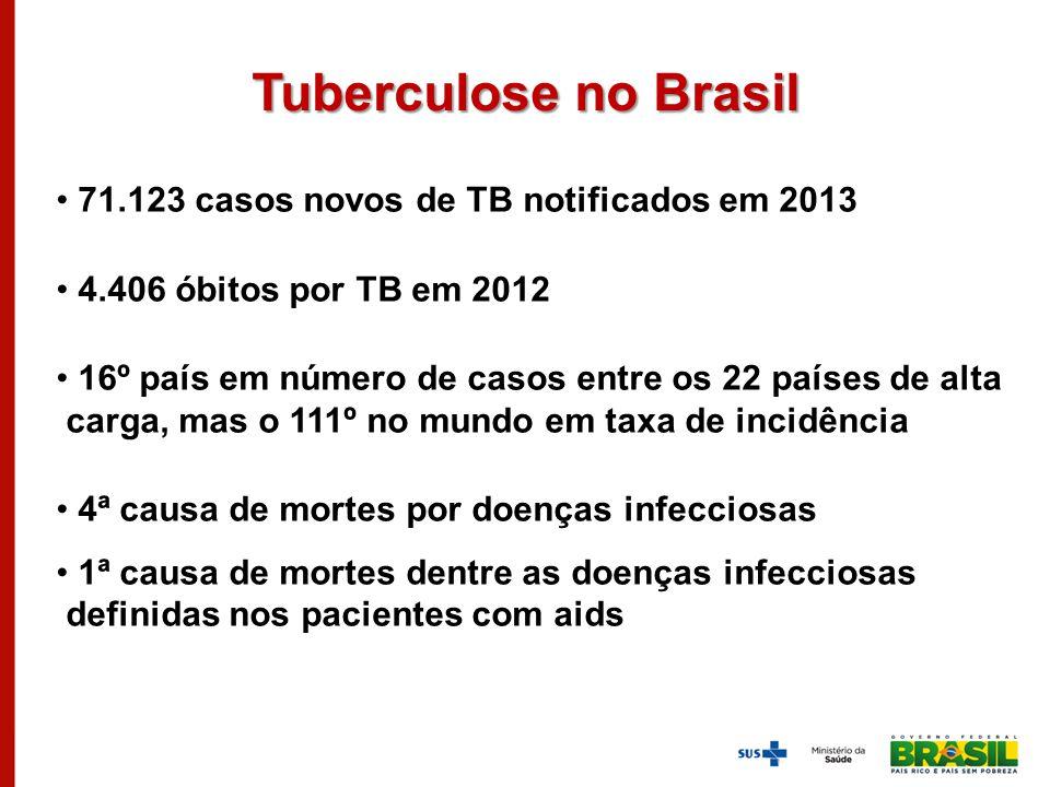 71.123 casos novos de TB notificados em 2013 4.406 óbitos por TB em 2012 16º país em número de casos entre os 22 países de alta carga, mas o 111º no m