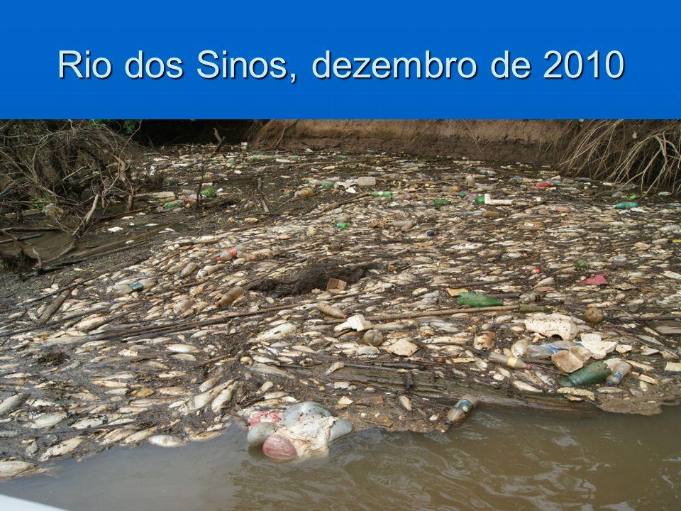 Rio dos Sinos, dezembro de 2010 5
