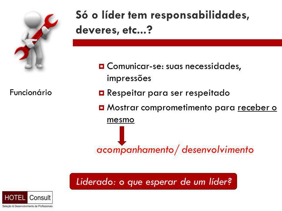 Só o líder tem responsabilidades, deveres, etc....