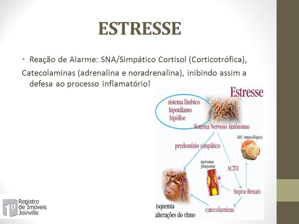 ESTRESSE Reação de Alarme: SNA/Simpático Cortisol (Corticotrófica), Catecolaminas (adrenalina e noradrenalina), inibindo assim a defesa ao processo in