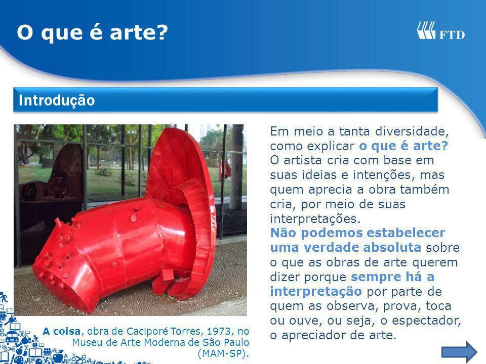 A coisa, obra de Caciporé Torres, 1973, no Museu de Arte Moderna de São Paulo (MAM-SP). Em meio a tanta diversidade, como explicar o que é arte? O art