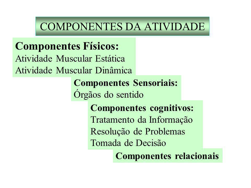 COMPONENTES DA ATIVIDADE Componentes Físicos: Atividade Muscular Estática Atividade Muscular Dinâmica Componentes Sensoriais: Órgãos do sentido Componentes cognitivos: Tratamento da Informação Resolução de Problemas Tomada de Decisão Componentes relacionais
