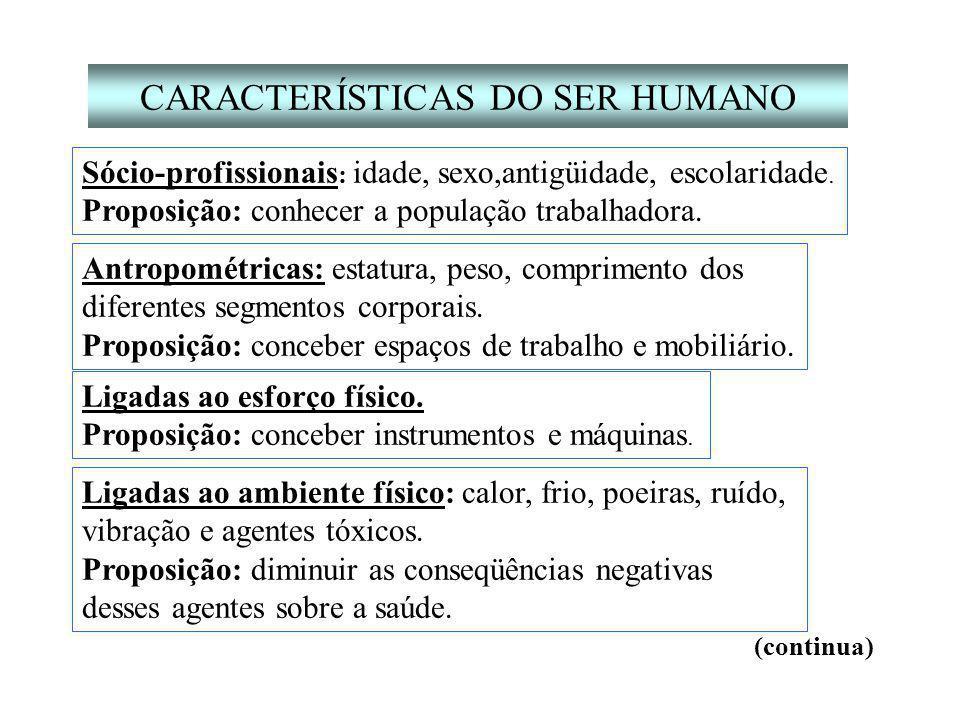 CARACTERÍSTICAS DO SER HUMANO Sócio-profissionais : idade, sexo,antigüidade, escolaridade.