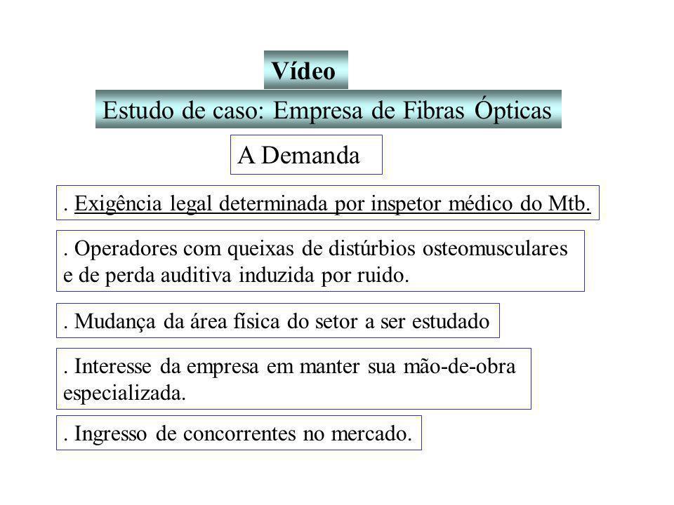Vídeo Estudo de caso: Empresa de Fibras Ópticas A Demanda.
