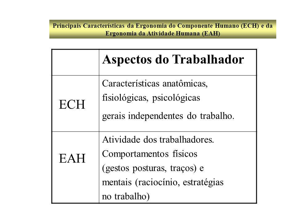 CAMPOS DA ERGONOMIA ERGONOMIA DO PRODUTO ERGONOMIA DA PRODUÇÃO ERGONOMIA DE CONCEPÇÃO ERGONOMIA DE CORREÇÃO