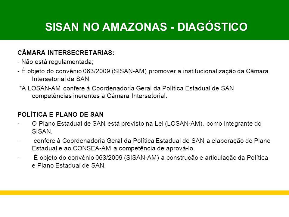 CÂMARA INTERSECRETARIAS: - Não está regulamentada; - É objeto do convênio 063/2009 (SISAN-AM) promover a institucionalização da Câmara Intersetorial d