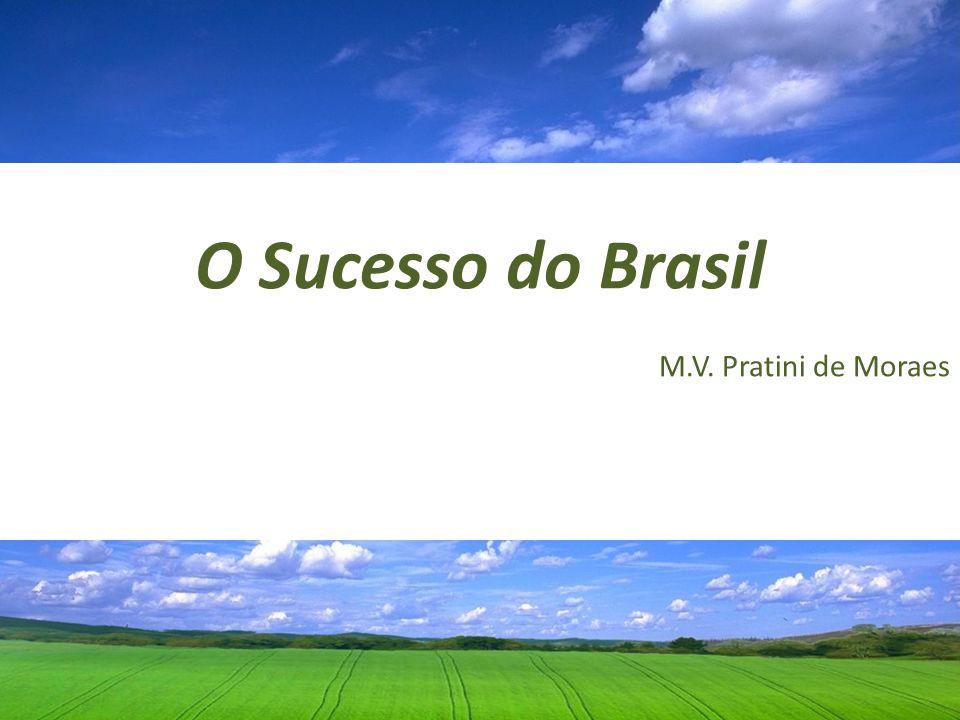 O Sucesso do Brasil M.V. Pratini de Moraes